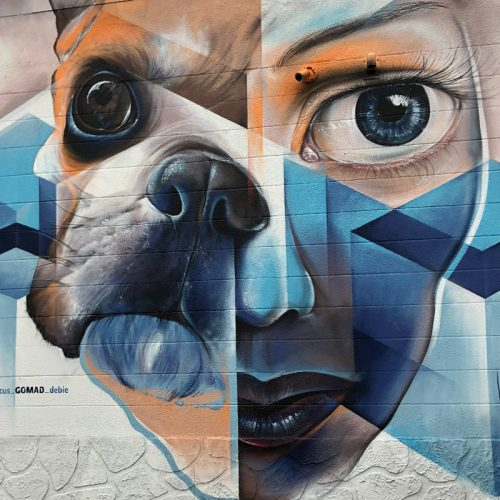 mural miami stpete barkyard GOMAD streetart