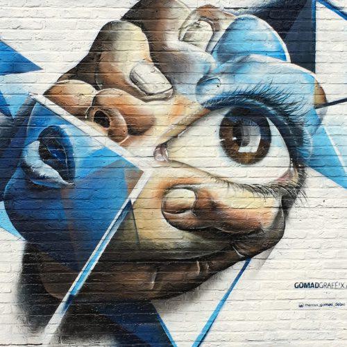 graffiti muurschildering mos belgium