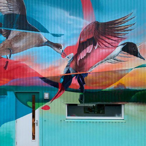 muurschildering gevel woonhuis alkmaar eenden